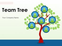 Team Tree Characteristics Organization Individual Growth Business