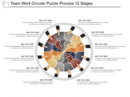 Team Work Circular Puzzle Process 12 Stages