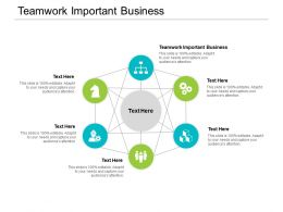 Teamwork Important Business Ppt Powerpoint Presentation File Example File Cpb