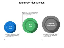 Teamwork Management Ppt Powerpoint Presentation Infographic Template Infographic Template Cpb