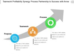 Teamwork Profitability Synergy Process Partnership To Success With Arrow