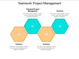 Teamwork Project Management Ppt Powerpoint Presentation Portfolio Elements Cpb