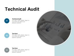 Technical Audit Ppt Powerpoint Presentation Layouts Graphics Download Cpb