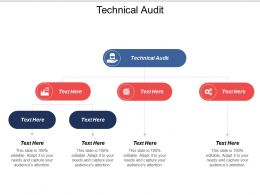 Technical Audit Ppt Powerpoint Presentation Model Ideas Cpb