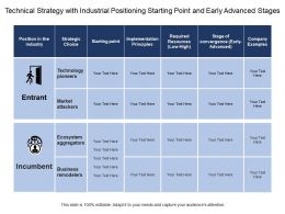 Technical Strategy With Industrial Positioning Starting Point And Early Advanced Stages