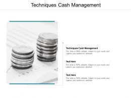 Techniques Cash Management Ppt Powerpoint Presentation Styles Summary Cpb