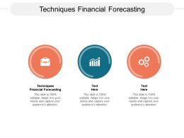 Techniques Financial Forecasting Ppt Powerpoint Presentation Ideas Diagrams Cpb