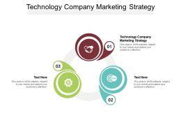 Technology Company Marketing Strategy Ppt Presentation Ideas Objects Cpb