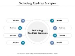 Technology Roadmap Examples Ppt Powerpoint Presentation Infographics Samples Cpb