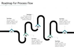 Technology Service Provider Solutions Roadmap For Process Flow Ppt Elements