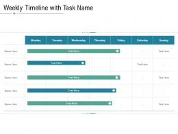 Technology Service Provider Solutions Weekly Timeline With Task Name Ppt Topics