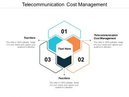Telecommunication Cost Management Ppt Powerpoint Presentation Styles Files Cpb