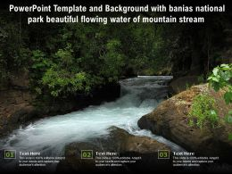 Template And Background With Banias National Park Beautiful Flowing Water Of Mountain Stream