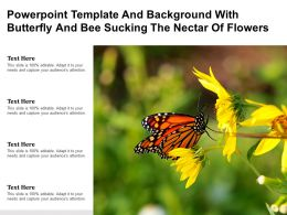 Template And Background With Butterfly And Bee Sucking The Nectar Of Flowers Ppt Powerpoint