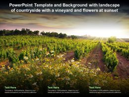 Template And Background With Landscape Of Countryside With A Vineyard And Flowers At Sunset