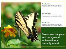 Template And Background With Swallowtail Butterfly Animal Ppt Powerpoint