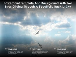 Template And Background With Two Birds Gliding Through A Beautifully Back Lit Sky
