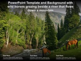 Template Background With Wild Horses Grazing Beside A River That Flows Down A Mountain