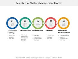Template For Strategy Management Process