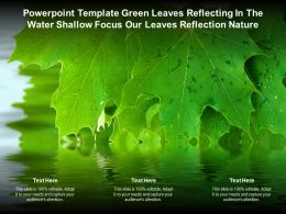 Template Green Leaves Reflecting In The Water Shallow Focus Our Leaves Reflection Nature