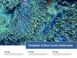 Template Of Blue Corals Underwater