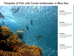 Template Of Fish With Corals Underwater In Blue Sea