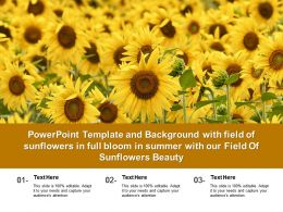 Template With Field Of Sunflowers In Full Bloom In Summer With Our Field Of Sunflowers Beauty