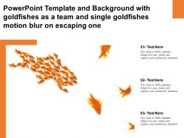 Template With Goldfishes As A Team And Single Goldfishes Motion Blur On Escaping One