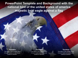 Template With National Bird Of United States Of America Majestic Bald Eagle Against A Flag