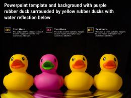Template With Purple Rubber Duck Surrounded By Yellow Rubber Ducks With Water Reflection Below