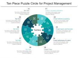 Ten Piece Puzzle Circle For Project Management