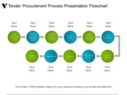 Tender Procurement Process Presentation Flowchart Ppt Summary