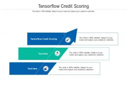 Tensorflow Credit Scoring Ppt Powerpoint Presentation Pictures Layout Cpb