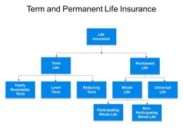 Term And Permanent Life Insurance