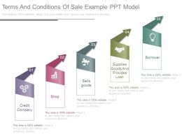 Terms And Conditions Of Sale Example Ppt Model