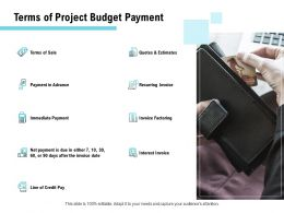 Terms Of Project Budget Payment Ppt Powerpoint Presentation Gallery Background Image