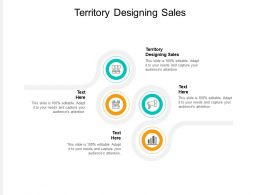 Territory Designing Sales Ppt Powerpoint Presentation Outline Objects Cpb