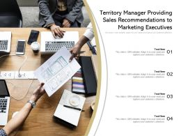 Territory Manager Providing Sales Recommendations To Marketing Executives