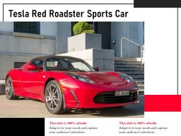 Tesla Red Roadster Sports Car