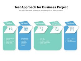 Test Approach For Business Project
