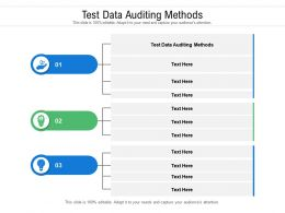 Test Data Auditing Methods Ppt Powerpoint Presentation File Demonstration Cpb