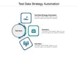 Test Data Strategy Automation Ppt Powerpoint Presentation Professional Tips Cpb