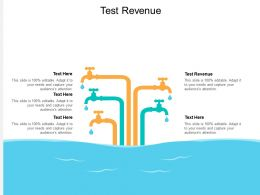 Test Revenue Ppt Powerpoint Presentation Icon Structure Cpb