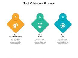 Test Validation Process Ppt Powerpoint Presentation Gallery Skills Cpb