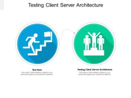 Testing Client Server Architecture Ppt Powerpoint Presentation Infographic Template Cpb