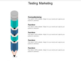 Testing Marketing Ppt Powerpoint Presentation Ideas Example Cpb