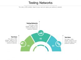 Testing Networks Ppt Powerpoint Presentation Example Cpb