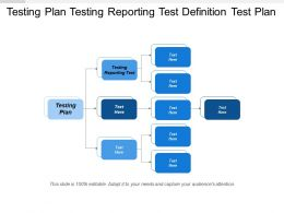 Testing Plan Testing Reporting Test Definition Test Plan