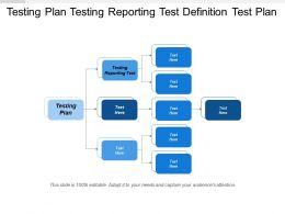Testing Plan Testing Reporting Test Definition Test Plan