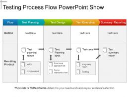 Testing Process Flow Powerpoint Show